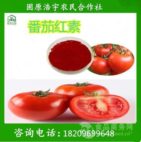 番茄提取物 番茄红素5% 番茄果粉 宁夏厂家现货