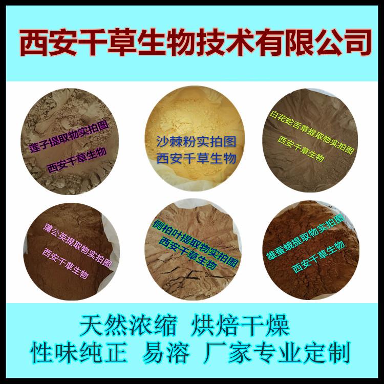生姜提取物 厂家生产天然提取物定做浓缩纯液