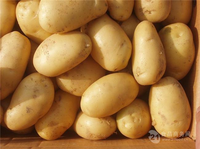 今天土豆多少钱一斤?今日土豆批发澳门星际平台详细报道