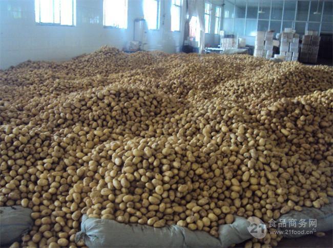 现在荷兰土豆多少钱一斤?今日荷兰土豆批发澳门星际平台 每日报价