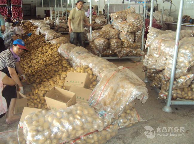 澳门星际注册土豆产地收购澳门星际平台今日澳门星际注册土豆批发澳门星际平台