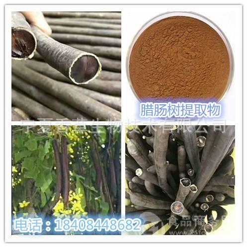 腊肠树提取物10:1 腊肠树粉 速溶 现货包邮 厂家供应 规格可定制