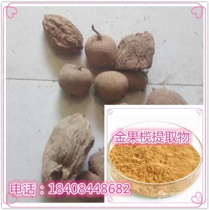 金果榄提取物10:1 宁夏厂家 金果榄生粉 金果榄浓缩汁 规格可定制