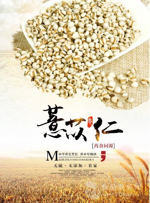薏苡仁/薏米生粉  五谷杂粮 药食同源 薏米粉价格