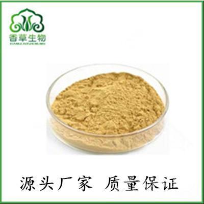 七叶莲提取物龙爪叶速溶粉/浓缩粉大量供货