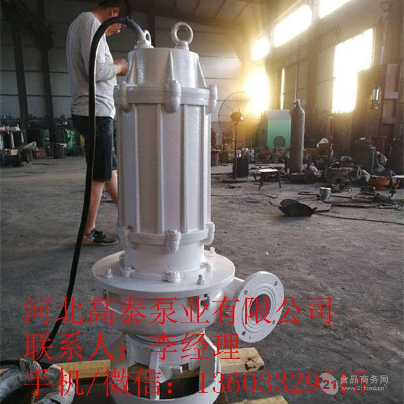 65ZJQ-50-25-K耐磨蚀渣浆泵 潜水式渣浆泵生产厂家