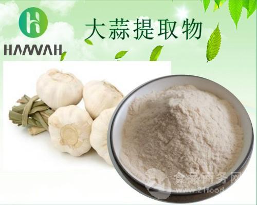 大蒜提取物10:1 20:1 可定制 大蒜浓缩粉