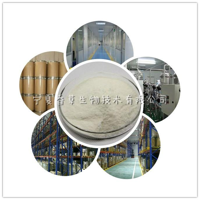 腺苷蛋氨酸 供应S-腺苷蛋氨酸 1公斤起批 欢迎采购
