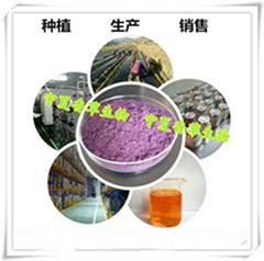 提供γ-氨基丁酸前来咨询 价格优惠