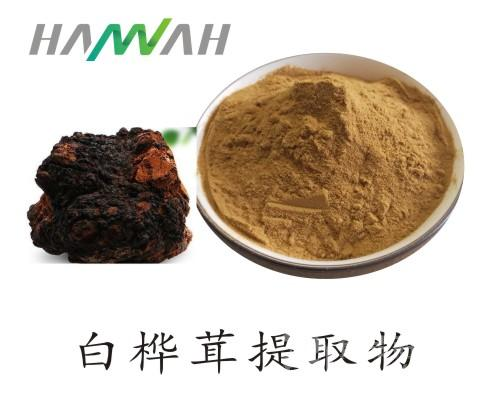 白桦茸提取物10:1 白桦茸浓缩粉 量大优惠
