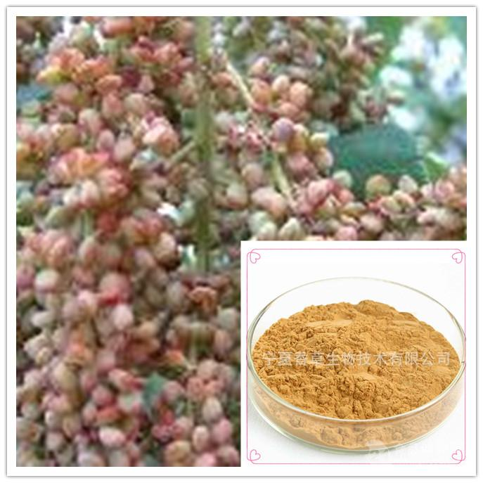 盐肤木果提取物10:1规格可定制 目数80-100目盐肤木果浸膏粉 现货