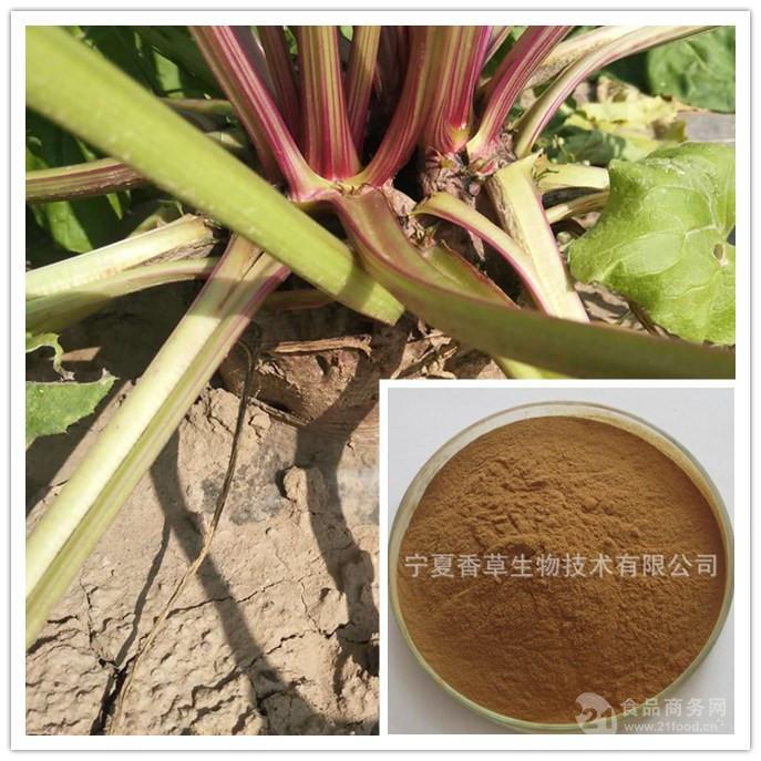 甜菜根提取物 10:1 含甜菜碱 香草生物  可定制规格 甜菜根粉