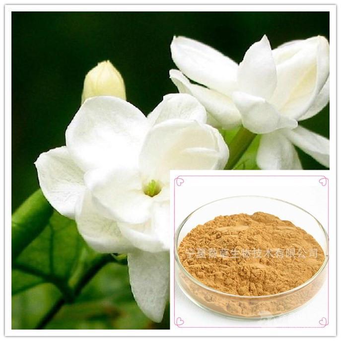 茉莉花提取物 茉莉花粉30:1精选优质茉莉花提取 现货直供 1kg起批