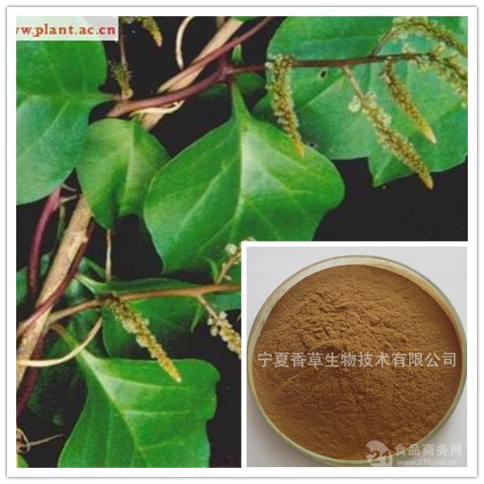 落葵提取物30:1 落葵浸膏粉 规格可定制 落葵粉 1公斤起订 现货