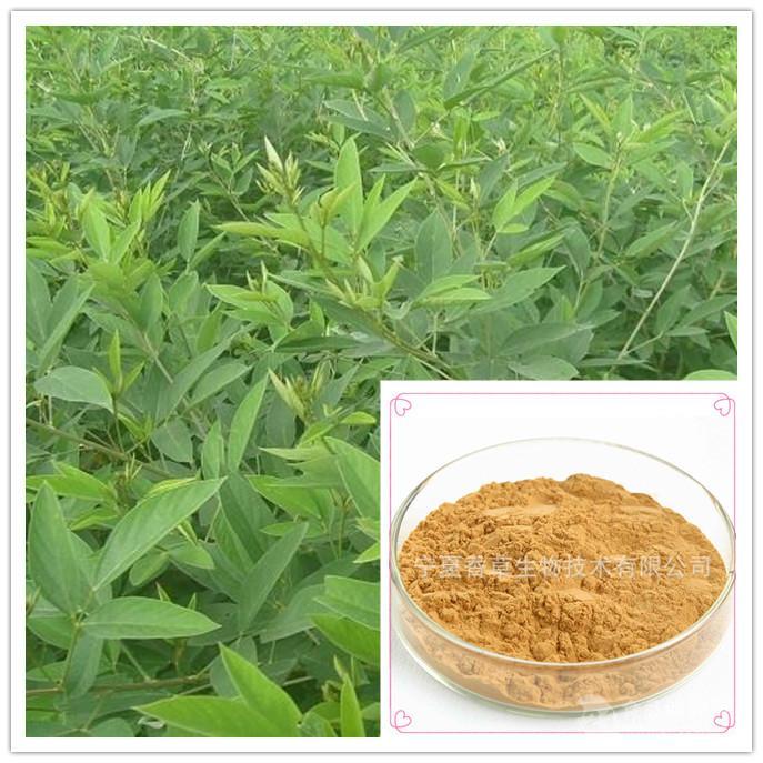 木豆叶提取物10:1 木豆叶粉 木豆叶萃取 现货价格木豆叶浓缩粉