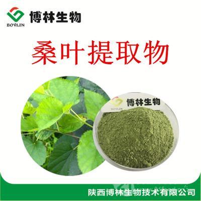 厂家供应桑叶提取物10:1 桑叶粉 植物提取物