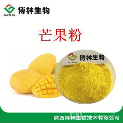 芒果冻干粉 食品饮料果蔬粉