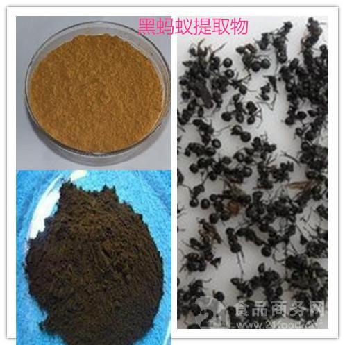 黑蚂蚁提取物 黑蚂蚁粉 黑蚂蚁速溶粉 黑蚂蚁浓缩液  厂家生产