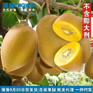 黄心猕猴桃50-70g中果15个 有机 顶冠CROWN 四川鸭嘴金果奇异果