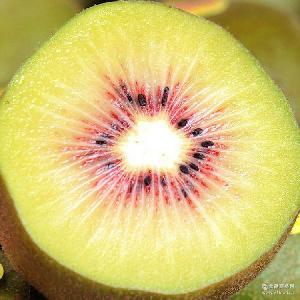 黄心猕猴 产地直供高山种植红心 产地批发包邮 桃新鲜水果