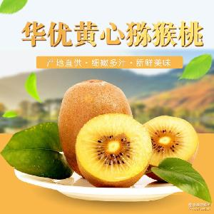 华优黄心猕猴桃 陕西特产 奇异果 应季新鲜水果批发 周至猕猴桃