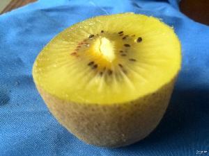奇异果 金太阳 盒装20个 一手货源 味香甜 包邮 黄心 猕猴桃