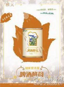 80元全国包邮 家庭自酿 精品啤酒酵母 啤酒高活性干酵母100克