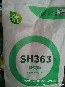 内蒙古优质 杂交食用葵花种子 SH363【网上热卖】 供应