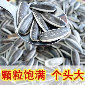 厂家直销 葵花子 大花籽 价格优惠 原产地供应葵花籽 生瓜子