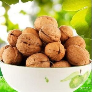 营养丰富 新疆批发产品 若羌核桃 质量不错的核桃 新疆特产品