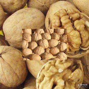 新疆特产核桃 又称胡桃 不错的核桃值得您选择 羌桃 营养丰富