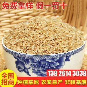 五谷杂粮现货批发 免费拿样 糯糙米五谷杂粮25公斤/袋