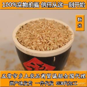 淘宝优质货源 长粒糙米 糙米批发 五常大米 发芽糙米 东北大米
