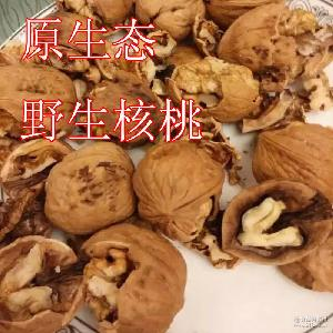 跑江湖展销会热卖 *热卖产品热销 黄土高坡核桃 山西新疆核桃