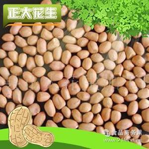 80/100高品质白沙花生米 干生花生米 出口级花生米 强力推荐