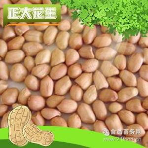 生产供应 高品质散装花生米 白沙花生米系列 精选大白沙花生米