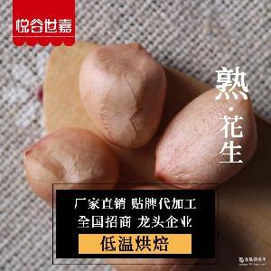 磨粉现磨豆浆原料 低温烘焙花生米 烘焙五谷杂粮批发 熟红皮花生