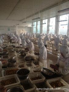 优质迁西板栗 批发销售 枣庄永兴出售速冻板栗仁 厂家供应