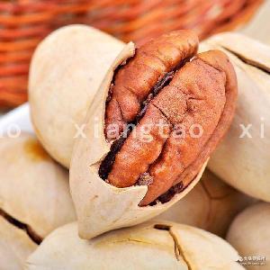 零食批发 碧根果 厂家直销零食一件代发 长寿果 干果 坚果炒货