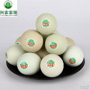 农场批发直销健康*富硒鸡蛋产品孕妇坐月子蛋黑珍珠绿壳蛋