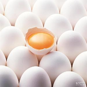 鹅蛋白量大价优 厂家批发新鲜白壳鸡蛋土鸡蛋草鸡蛋白壳乌鸡蛋