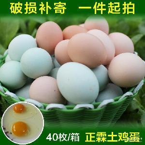 鸡蛋批发厂家直销 散养生土鸡蛋直销批发 青壳土鸡蛋禽蛋收购供应