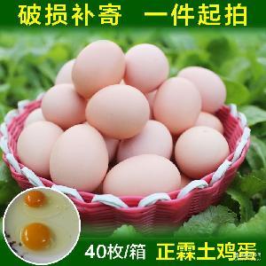 受精土鸡蛋批发厂家直销 湖北青脚土鸡苗种蛋 土鸡种蛋禽蛋批发