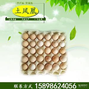 绿壳鸡蛋 乌鸡蛋鸡蛋批发 农家散养自产土鸡蛋 新鲜无公害