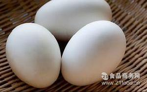 新鲜鹅蛋 上海鹅蛋批发 蛋厂直供 箱装鹅蛋批发配送