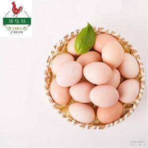 土鸡蛋农家散养 物美价廉 厂家直供禽蛋 量大优惠 天然绿色鸡蛋