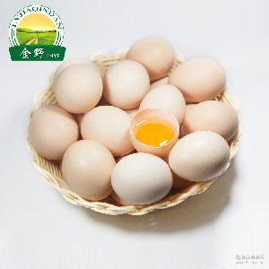 散养土鸡蛋长寿乡如皋绿佳禽蛋销售中心普通散养草鸡蛋土鸡蛋批发