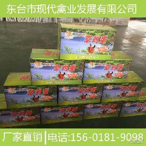 超市* 草鸡蛋 农家散养 土鸡蛋 生态 喜蛋 礼盒装 草缘