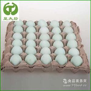 生态乌鸡绿壳蛋 有机农家绿壳蛋 批发供应 纯天然散养绿壳蛋