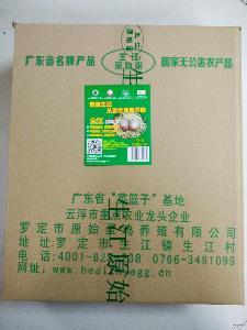 生江原始蛋 *产品 厂家直供 土鸡蛋 无公害鸡蛋 鲜鸡蛋